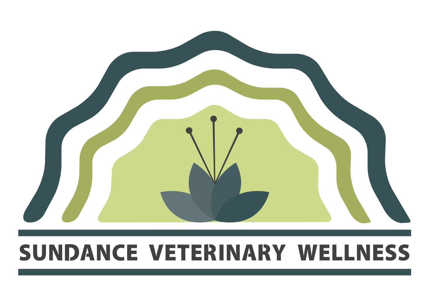 Sundance Veterinary Wellness Selects Our Software to Power its Growing Practice