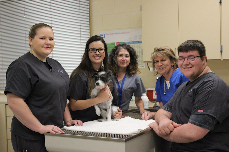 Customer Spotlight: Edu-Vet Pet Hospital