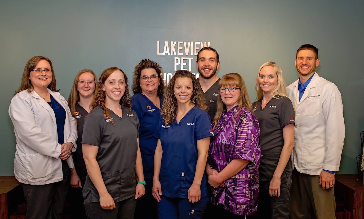 Customer Spotlight: Lakeview Pet Hospital